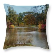Fall Series 9 Throw Pillow
