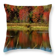 Fall Splendor Throw Pillow