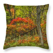 Fall Sumac Trees With Red Leaves In A Michigan Forest During Autumn Throw Pillow