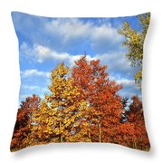 Fall Sunrise On Hackmatack Nwr Oaks Throw Pillow