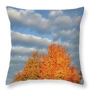 Fall Sunrise On Sugar Maple Along Route 31 Throw Pillow