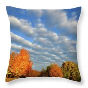 Fall Sunrise Over Hackmatack Nwr Throw Pillow