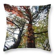 Fall Tall Throw Pillow