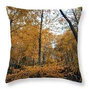Fall Tees At  Yankee Horse Overlook   Throw Pillow