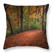Fall Trail Throw Pillow