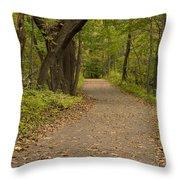 Fall Trail Scene 45 A Throw Pillow