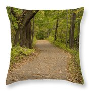 Fall Trail Scene 45 B Throw Pillow