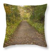 Fall Trail Scene 48 Throw Pillow