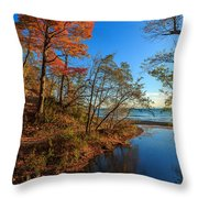 Fall Trails Throw Pillow