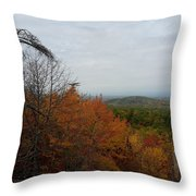 Fall Transitions Throw Pillow