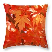Fall Tree Art Autumn Leaves Red Orange Baslee Troutman Throw Pillow