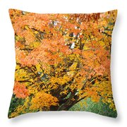 Fall Tree Art Print Autumn Leaves Throw Pillow