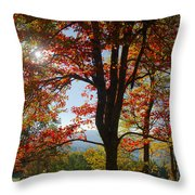 Fall Tree Colors I Throw Pillow