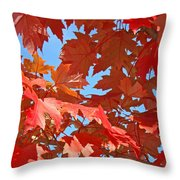 Fall Tree Leaves Red Orange Autumn Leaves Blue Sky Throw Pillow