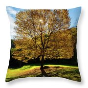 Fall Tree Silhouette Kent Falls State Park Connecticut Throw Pillow