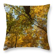 Fall Tree Tops Throw Pillow
