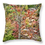 Fall Tree With Intense Colors Throw Pillow