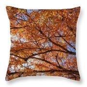 Fall Tree With Star Burst Throw Pillow