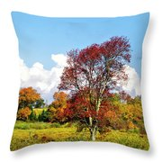 Fall Trees In Country Field Throw Pillow