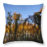 Fall Trees Reflected Throw Pillow