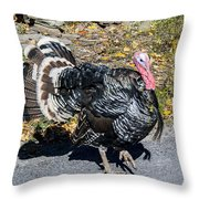 Fall Turkey Throw Pillow