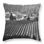 Vineyard In Black And White Throw Pillow
