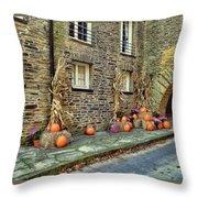 Fall Walkway  Throw Pillow
