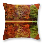 Fall Waters Throw Pillow