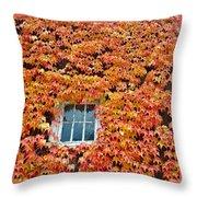 Fall Window Throw Pillow