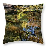 Fall Into Seasons Throw Pillow