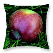 Fallen Apple Throw Pillow