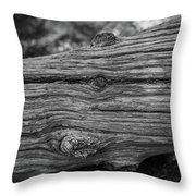 Fallen Black And White Trees And Lines In Nature Throw Pillow