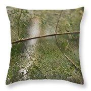 fallen Leaf Throw Pillow by Debbie Cundy