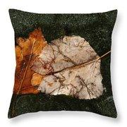 Fallen Leaves On Frozen Water Throw Pillow