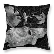 Fallen Leaves Revisited Throw Pillow