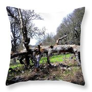 Fallen Mighty Oak Throw Pillow