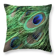 Fallen Phoenix Throw Pillow