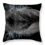 Fallen Reflections 5 Throw Pillow