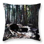 Fallen Sequoia Crescent Meadow Trail Throw Pillow