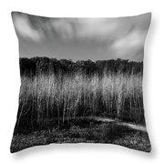 Fallen Timbers Battlefield Throw Pillow