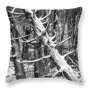 Fallen Tree And Snow Throw Pillow