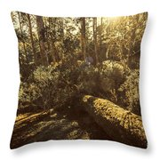 Fallen Tree In Foliage Throw Pillow