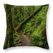 Fallen Tree On The Trail Throw Pillow