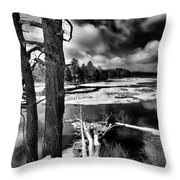 Fallen Trees In The Moose River Throw Pillow