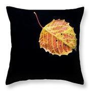 Falling Birch Leaf Throw Pillow