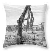 Falling Joshua Tree Branch Throw Pillow