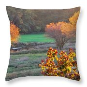 A Fall Day.  Throw Pillow