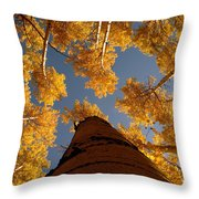 Falling Sky Throw Pillow