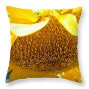 Falling Sunflower Throw Pillow