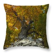 Falling Tree Throw Pillow
